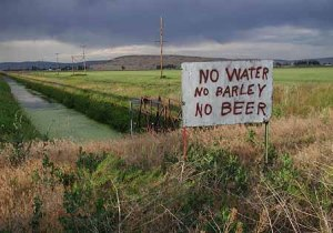 No Water, No Barley, No Beer - Klamath 2001